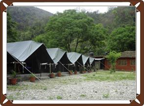 Jungle Luxury C& (Vs) Beach C& & Retreat Jungle | Jungle Camping Rishikesh | Rishikesh Rafting Tour